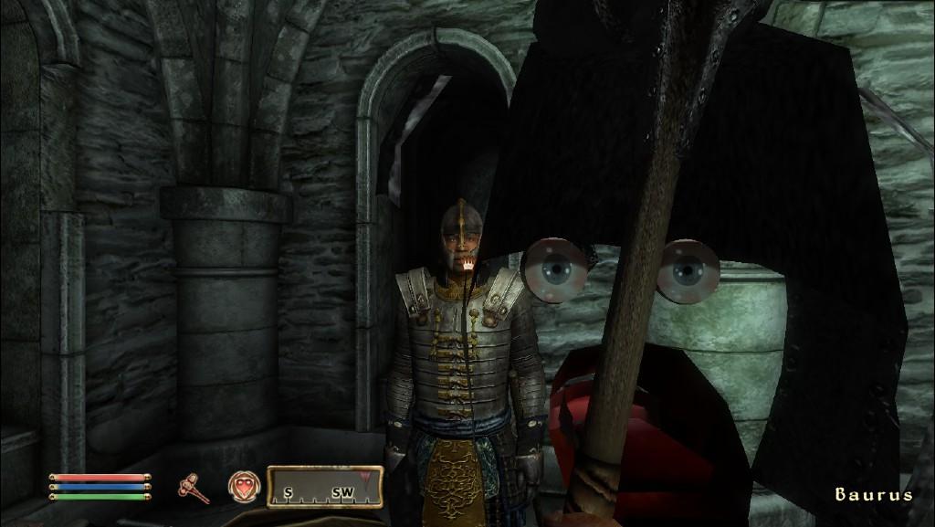 Odd Elder Scrolls: Oblivion bug - boards ie